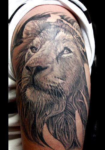 Tattoos - Nature Animal Lion tattoos - Lion