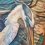 tattoos/ - Blue Heron & Red Snapper tattoo - 125179