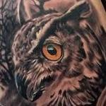 Owl cover up Tattoo Design Thumbnail