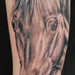Realistic Black and Grey Horse Tattoo Tattoo Design Thumbnail