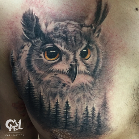 Tattoos - Realistic Owl Tattoo - 126970
