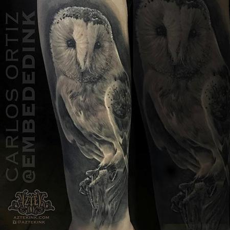 tattoos/ - Black and Grey Owl - 132036