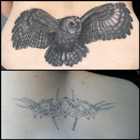 Coverup - Owl coverup