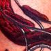 Tattoo-Books - Red Rocking Chair - 3500