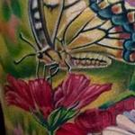 Butterfly/Flower Half Sleeve In Progress Tattoo Design Thumbnail