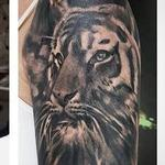 tattoos/ - Tiger Coverup - 128638