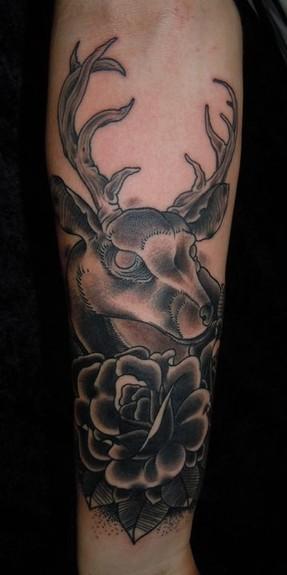 tattoos/ - Deer Tattoo - 52766