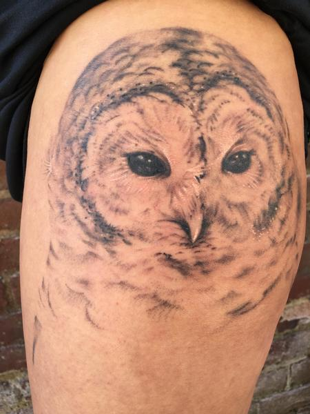 tattoos/ - In progress partially healed owl - 129958