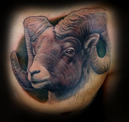 Body Part Chest Tattoos for Men - Realistic Big Horn Sheep chest piece