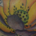 Color lotus tattoo Tattoo Design Thumbnail