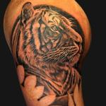 Tiger portrait Tattoo Design Thumbnail