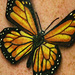 Monarch butterfly tattoo Original Art Thumbnail