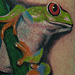 red eyed tree frog tattoo Tattoo Design Thumbnail