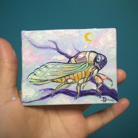 Art Galleries - Moon Cicada - 129410