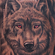 Red Eyed Wolf Tattoo Tattoo Design Thumbnail