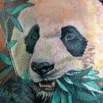 Panda tattoo Tattoo Design Thumbnail