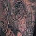 Tattoo-Books - Africa's Big 5 - 67255