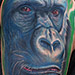 Tattoo-Books - Gorilla Tattoo - 69616