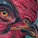Tattoo-Books - Chicken Tattoo - 50500