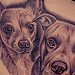 Chihuahua and Pitbull  Tattoo Design Thumbnail