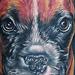 Tattoo-Books - Dog Tattoo - 43157