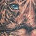 Tattoo-Books - Shaman and Jaguar  - 48966