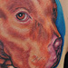 Tattoo-Books - PitBull Tattoo - 53121