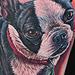 Tattoo-Books - Terrior Tattoo - 45234