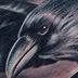 Crow Tattoo Tattoo Thumbnail