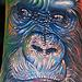 Tattoo-Books - Gorilla Tattoo - 26276