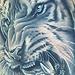 Tattoo-Books - Tiger Tattoo - 24666