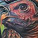 Tattoo-Books - Vulture Tattoo - 32543