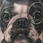 Boston Terrier Portrait Tattoo Design Thumbnail