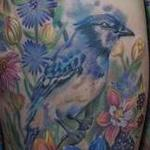 Blue Jay in Colorado meadow Tattoo Design Thumbnail