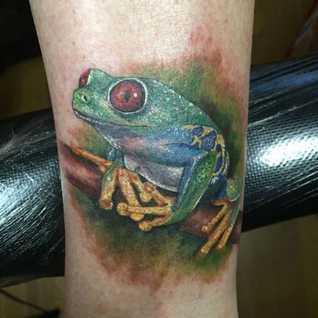Realistic - Tree frog in color