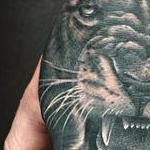 Realistic Lion in Black and Gray on the Back of a Hand Tattoo Design Thumbnail