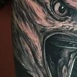 Realistic Eagles in Black and Gray Tattoo Design Thumbnail