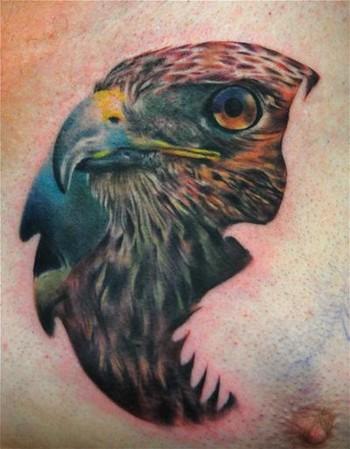 tattoos/ - Hawk Tattoo - 39968