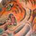 tattoo galleries/ - Turning Tiger