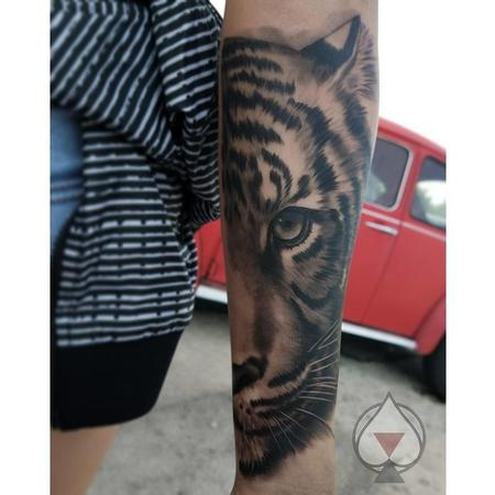 tattoos/ - Black and grey Tiger - 132002