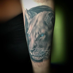 tattoos/ - bng animal portrait - 129702