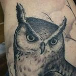 tattoo galleries/ - Black and Grey Owl cover up - 122763