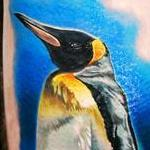 tattoo galleries/ - King Penguin