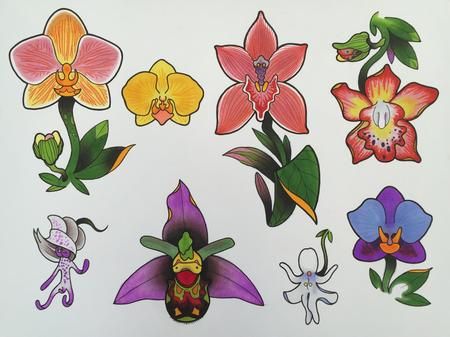 Art Galleries - Orchid Flash - 101771
