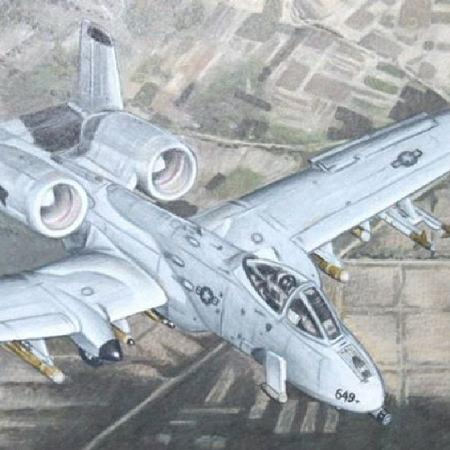 Art Galleries - Fighter Jet (A10) - 106195