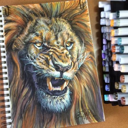 Art Galleries - Lion - 108295