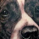 Pitbull Tattoo Tattoo Design Thumbnail