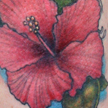 Hibiscus tattoo Tattoo Design Thumbnail