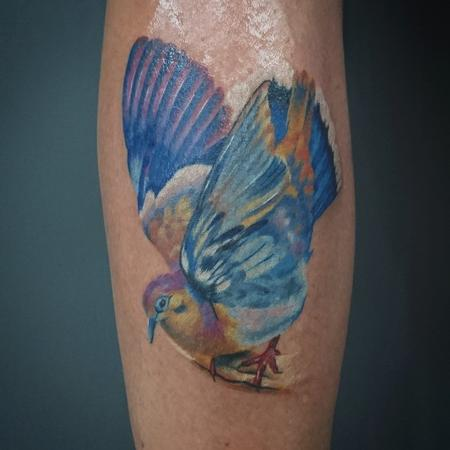 tattoos/ - Colourful Bird - 116385