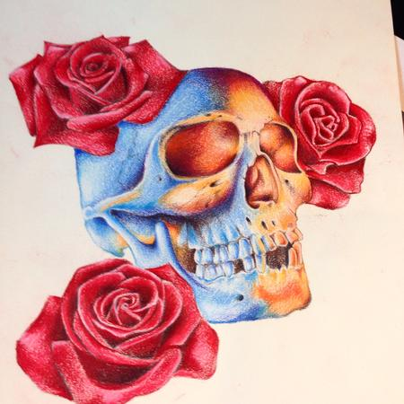Art Galleries - Skull and Roses - 104475